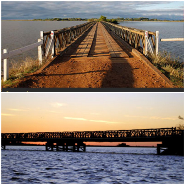 Ibera Puente Collage