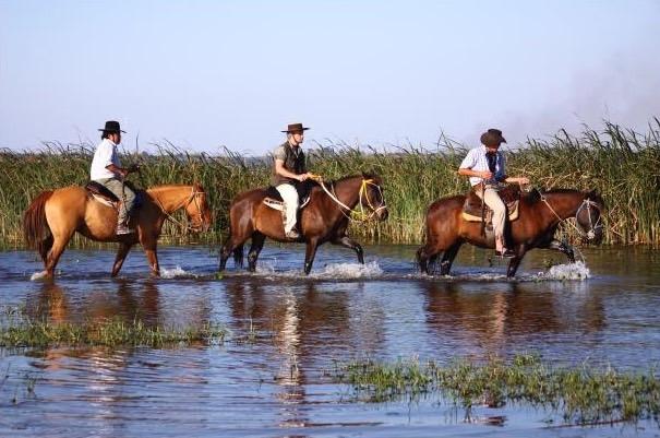 Ibera Horseback ride