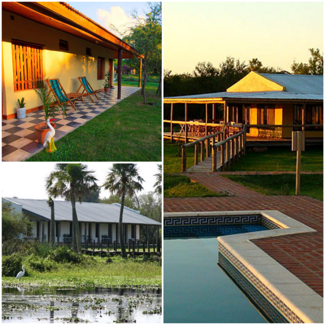 Ibera lodge Collage