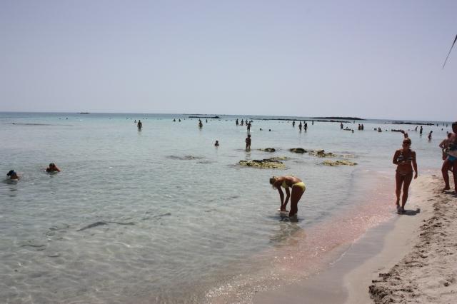 Crete Elafonissi D3