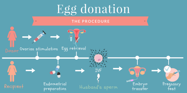 what is the percentage of pregnancy from precum